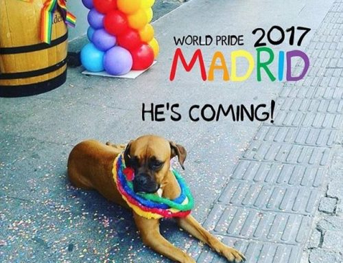 Orgullo Madrid 2017 – WorldPride