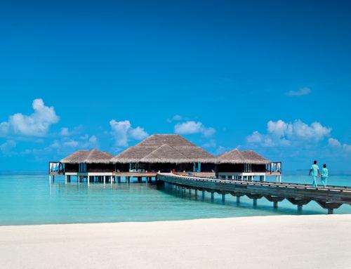 Velaa Private Island – La gran maravilla de las Maldivas