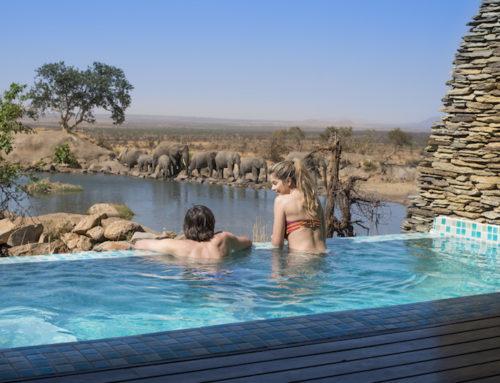 Lujo en el Serengueti