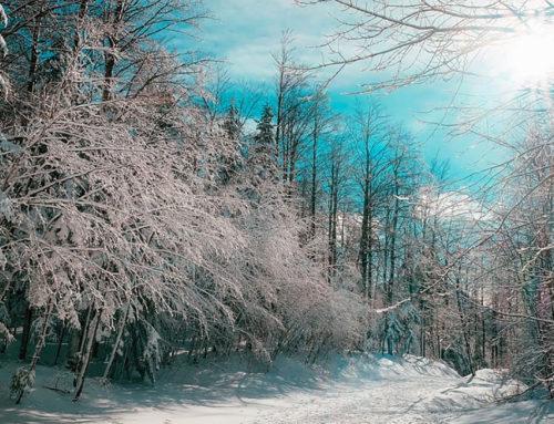 Canadá invernal