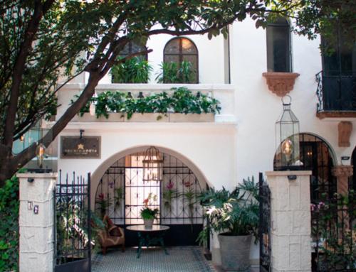 Orchid House, una estancia exuberante en el corazón de Polanco.